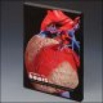 Exploring the Heart: A 3D Overview of Anatomy and Pathology